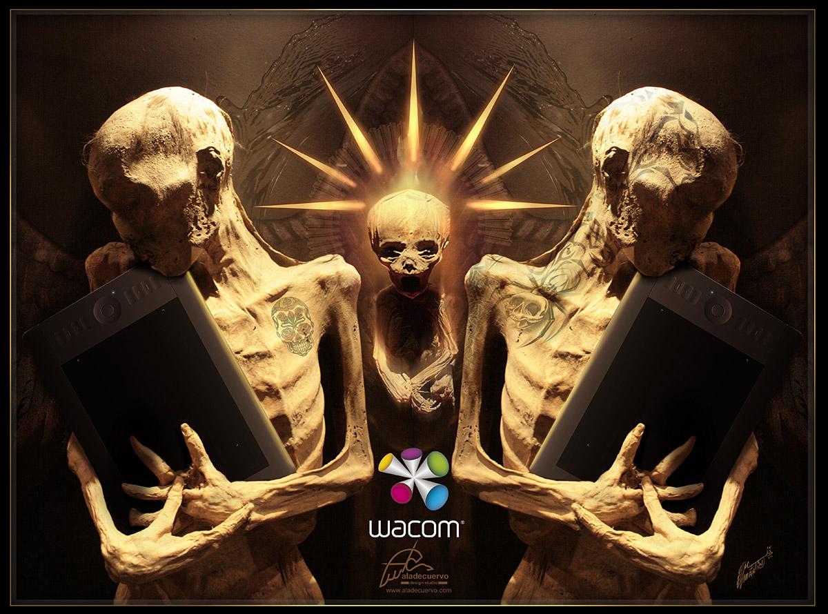 Wacom Live Demo: Mummies