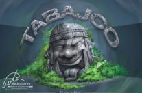 Cabeza Olmeca de Tabajco!