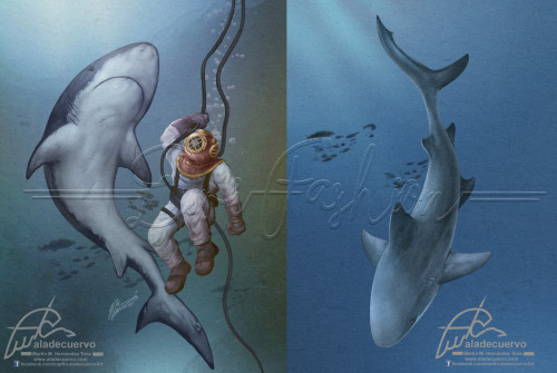 Deep diver and shark